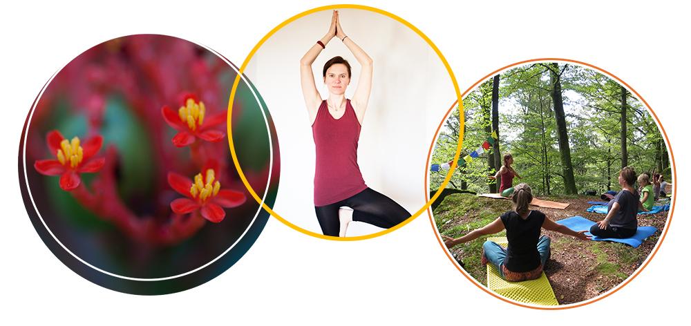 Yoga für Erwachsene Gabi Peterseil Yogakurse