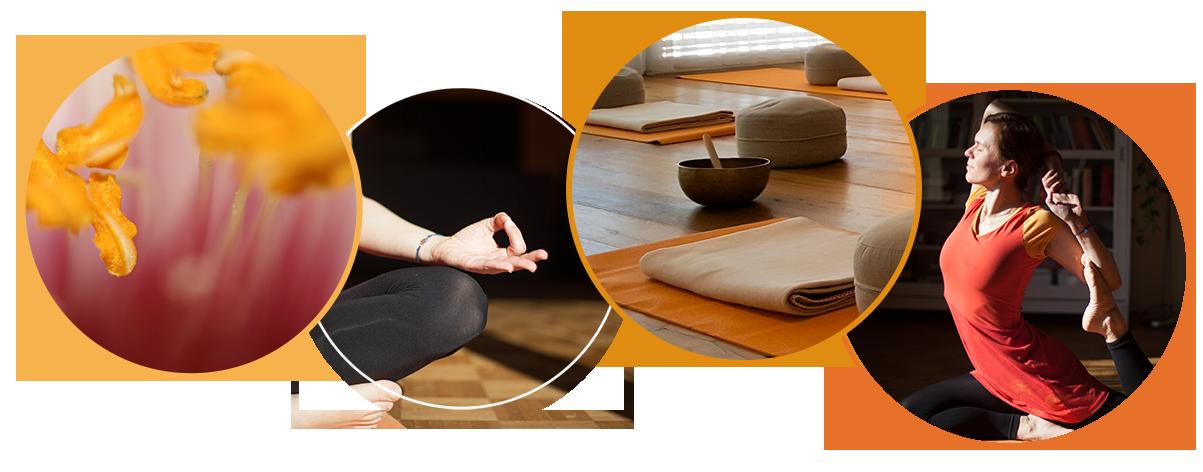 Gabi Peterseil Yoga Yogakurse in Perg